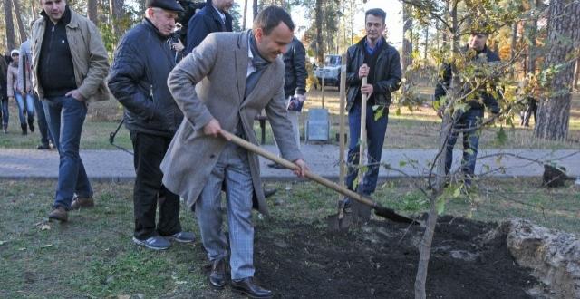 В Парке партизанской славы высадили аллею дубов